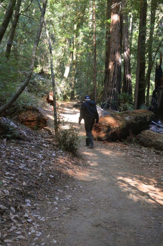 What Path Do You Walk?