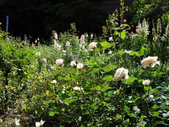 The Summer Lands Garden