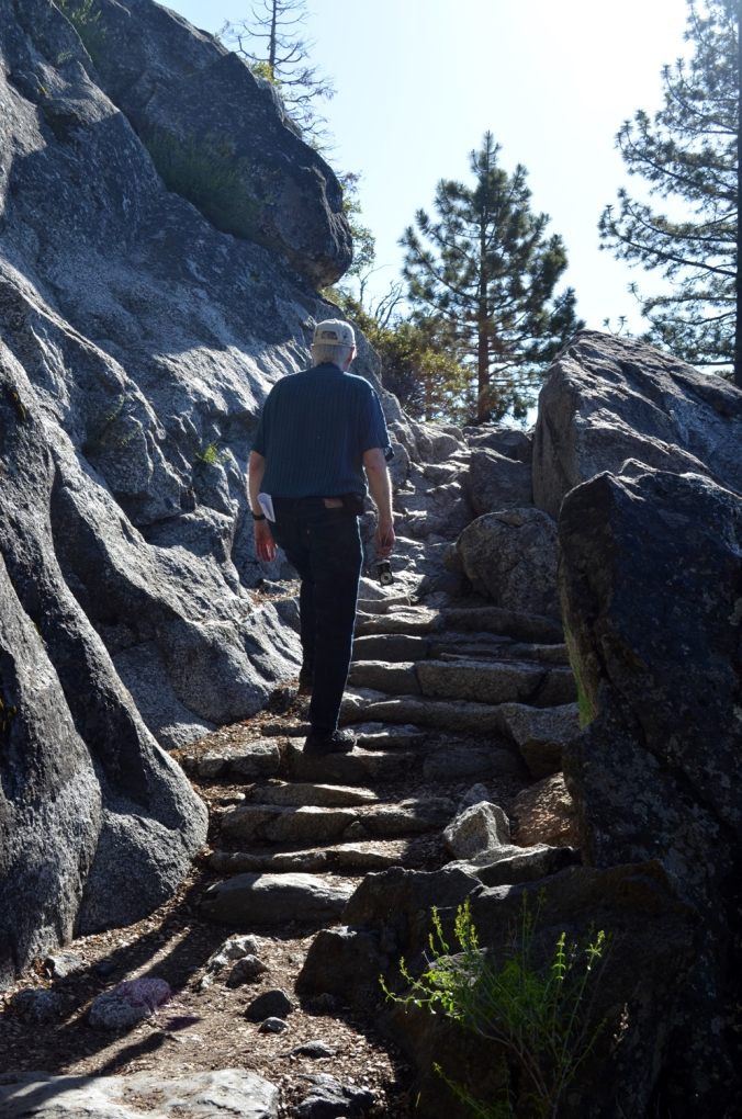 Elders Lead The Way