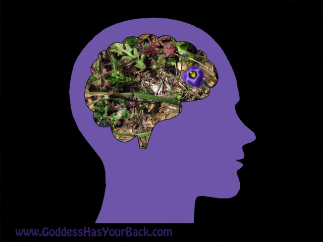 Control your mind. Control your health.